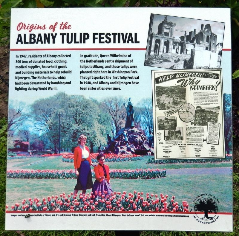 Origins of the Albany Tulip Festival Marker image. Click for full size.