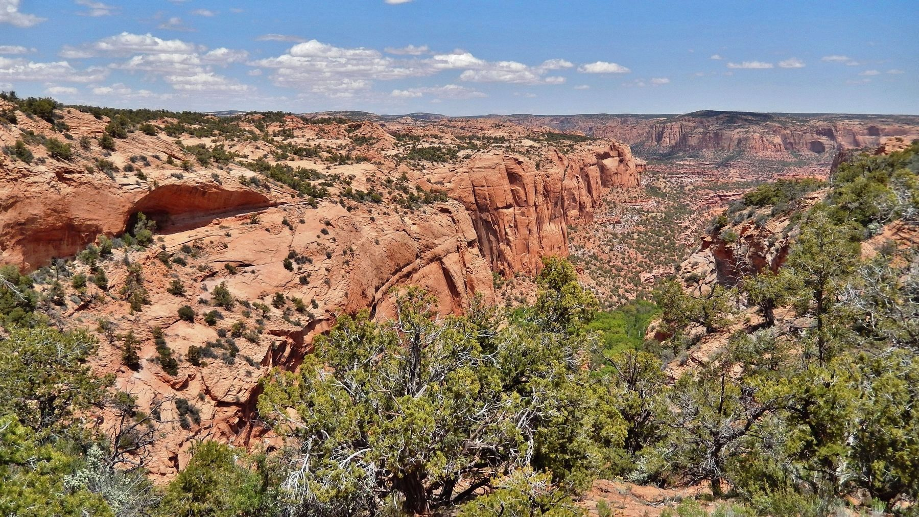 Betatakin Canyon (<i>view from Aspen Forest Overlook Trail</i>) image. Click for full size.