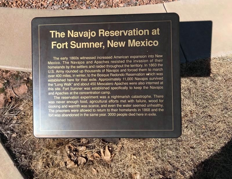 An additional nearby marker for the Navajo Reservation at Fort Sumner image. Click for full size.