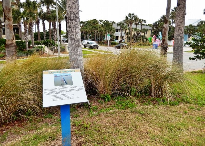 Coastal Weather Marker • <i>panel 2</i> (<i>wide view</i>) image. Click for full size.