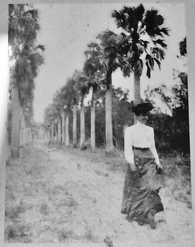 Marker detail: An early tourist walks the plantation grounds image. Click for full size.