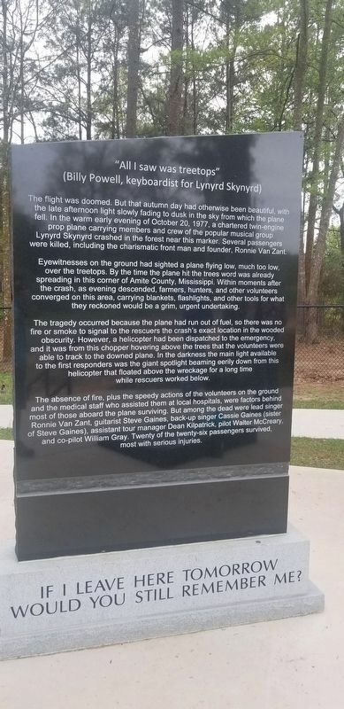 Lynyrd Skynyrd Crash Site Memorial image, Touch for more information