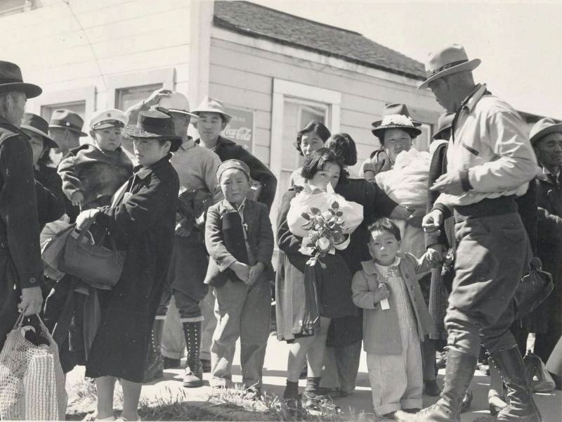"<i>""Families of Japanese ancestry arrived at Turlock assembly center... </i> image. Click for full size."
