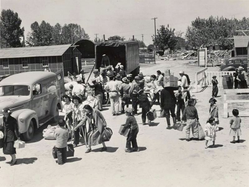<i> Families of Japanese ancestry arriving at the Turlock Assembly Center.</i> image. Click for full size.