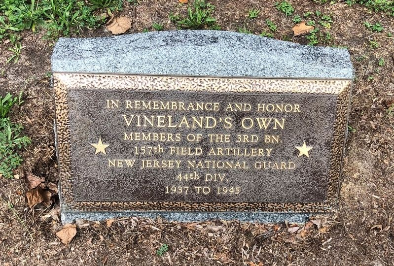 Vineland's Own Marker image. Click for full size.