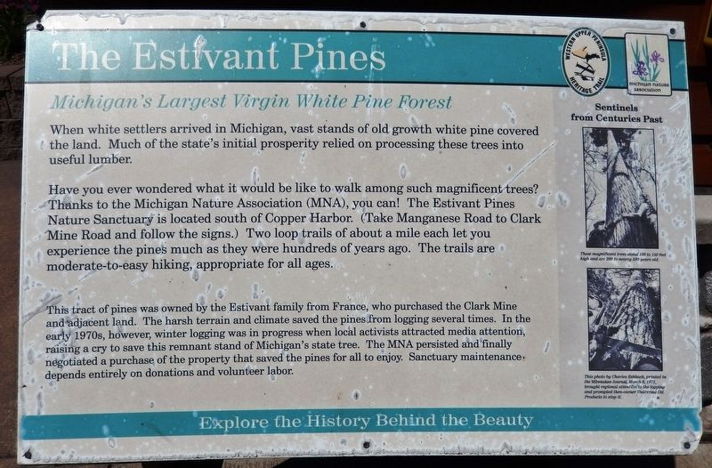 The Estivant Pines Marker image. Click for full size.