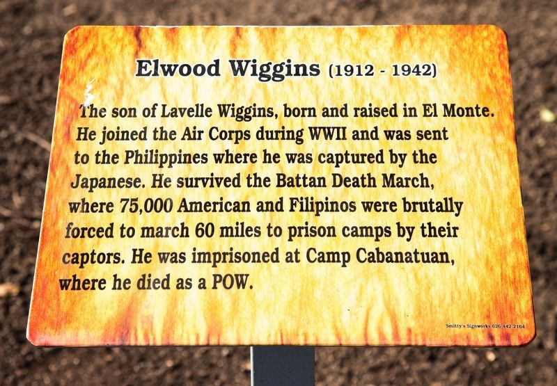 Elwood Wiggins Marker image. Click for full size.