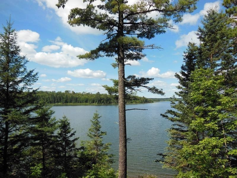 Lake Itasca image. Click for full size.