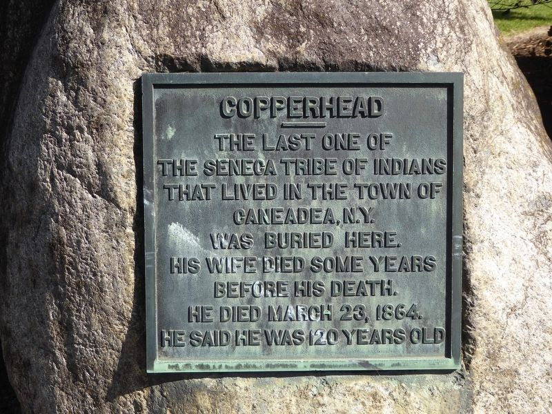 Copperhead Marker image. Click for full size.