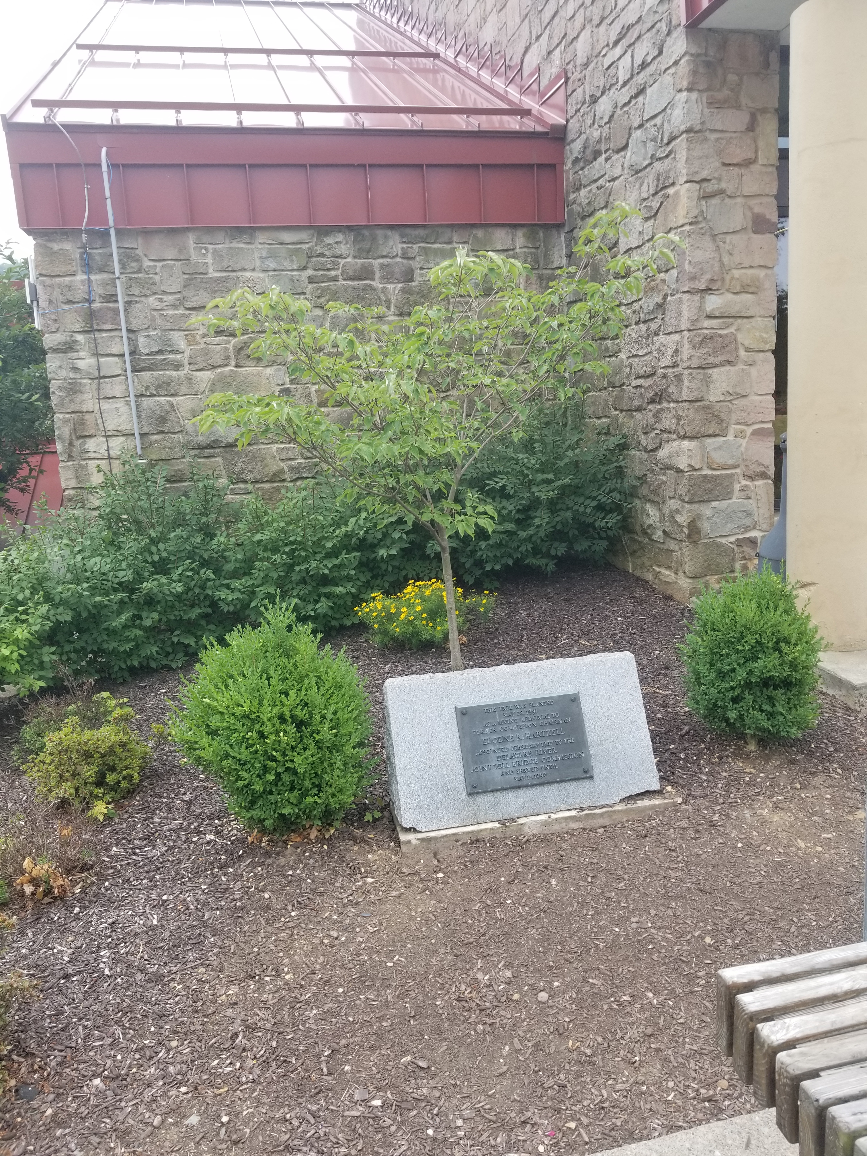 Eugene E. Hartzell Memorial Tree and Marker