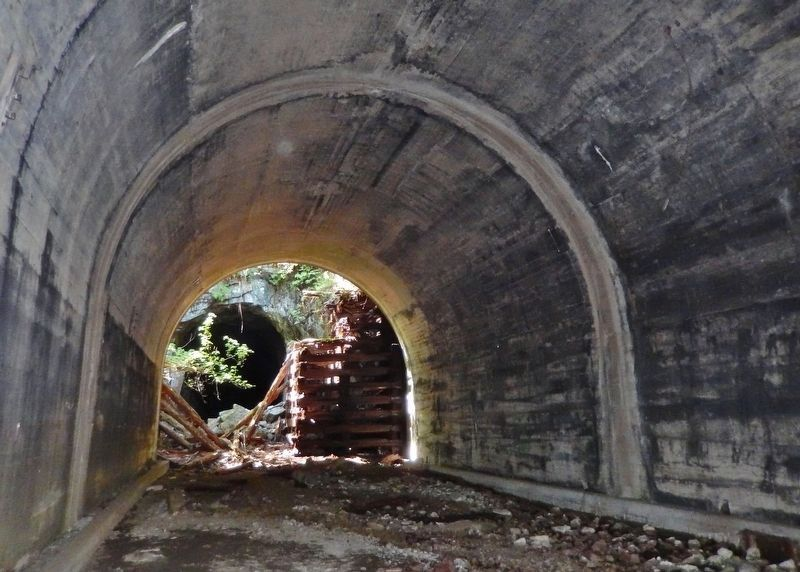Wooden Snowshed Ruins & West Tunnel Portal image. Click for full size.