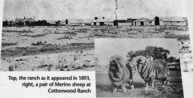 Marker detail: Cottonwood Ranch, 1893 image. Click for full size.