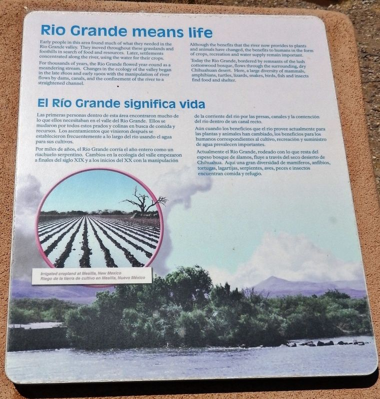 Rio Grande Means Life Marker image. Click for full size.