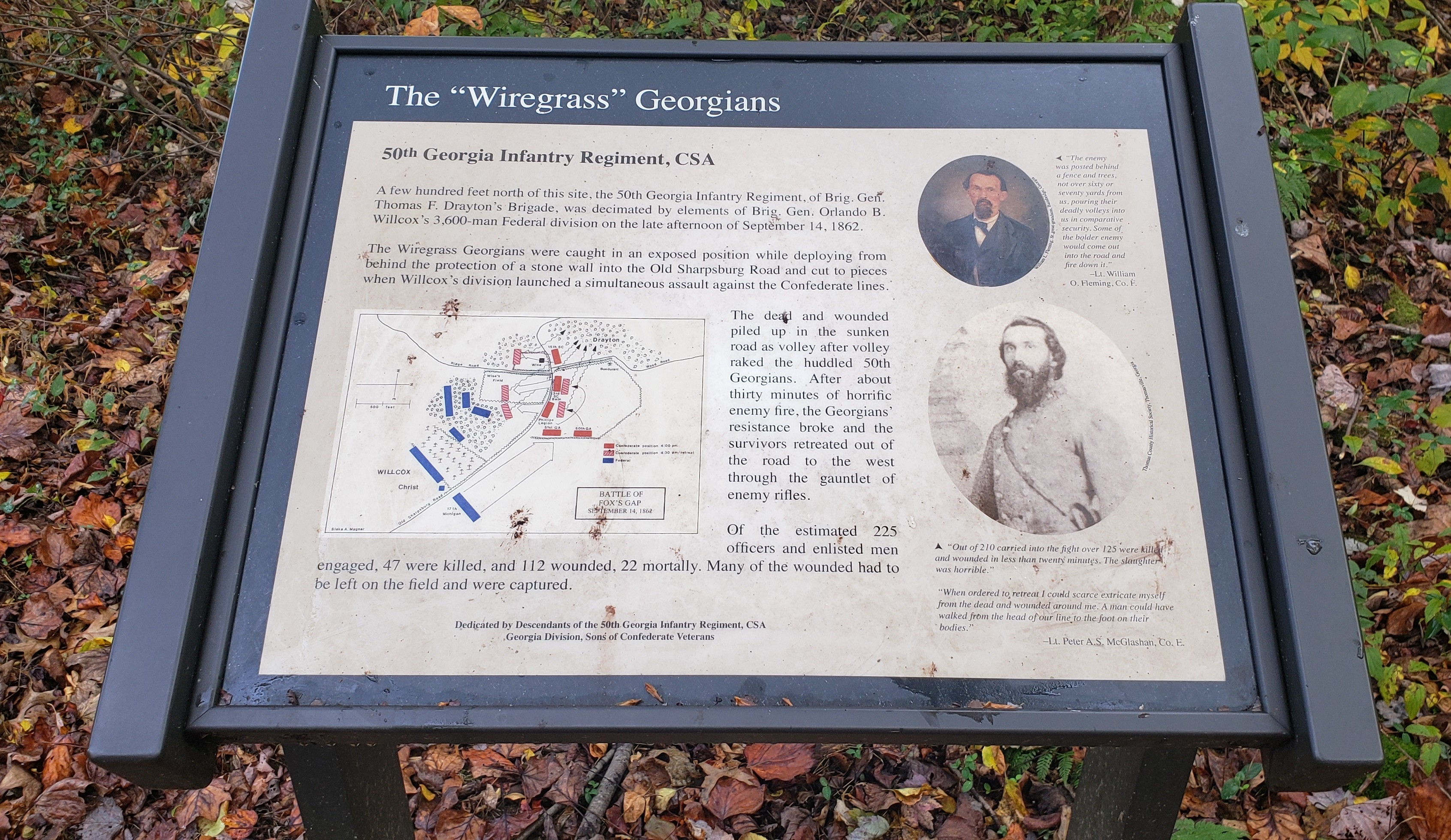 "The ""Wiregrass"" Georgians Marker"