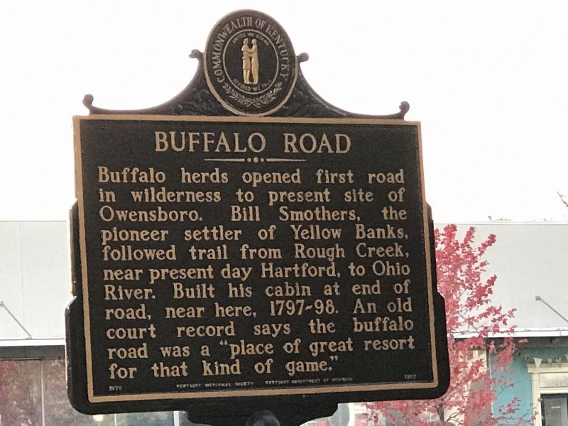 Buffalo Road Marker image. Click for full size.