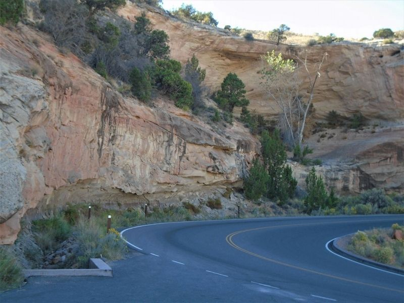 View of Rim Rock Drive switchback near the Upper Serpents Trail Marker image. Click for full size.