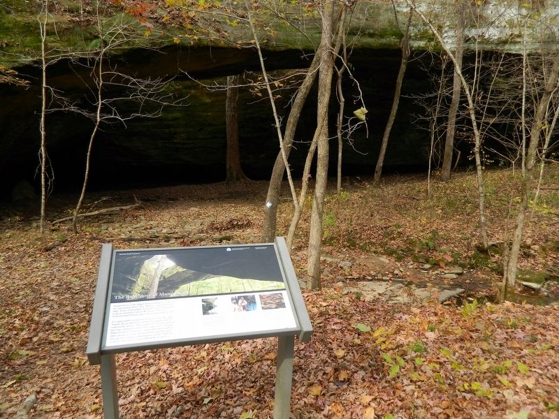 Area photo of The Real Story of Mantle Rock Marker image. Click for full size.