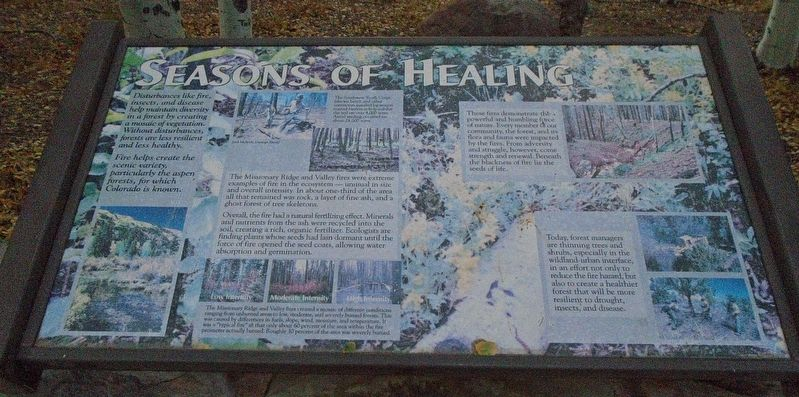 Seasons of Healing Marker image. Click for full size.
