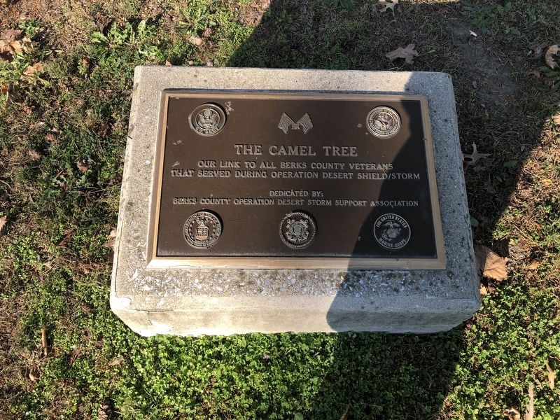 The Camel Tree Marker image. Click for full size.