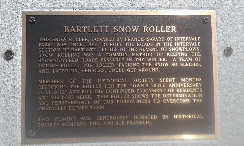 Bartlett Snow Roller Marker image. Click for full size.