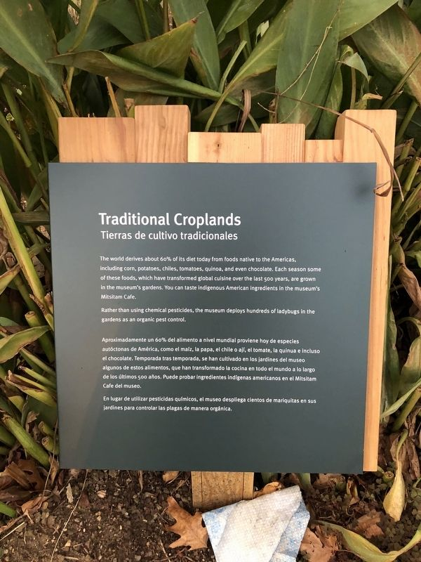Traditional Croplands Marker image. Click for full size.