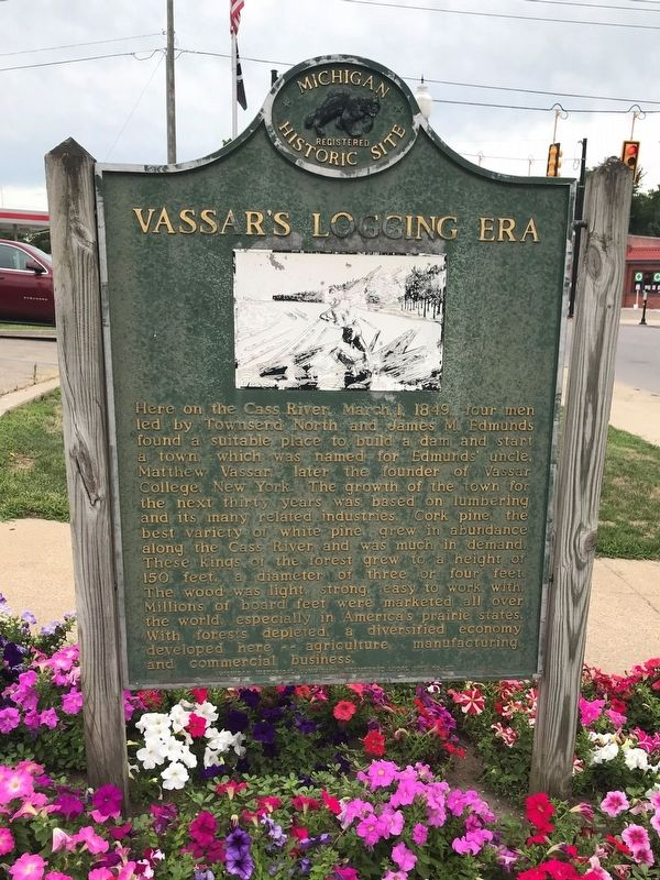 Vassar's Logging Era Marker image. Click for full size.