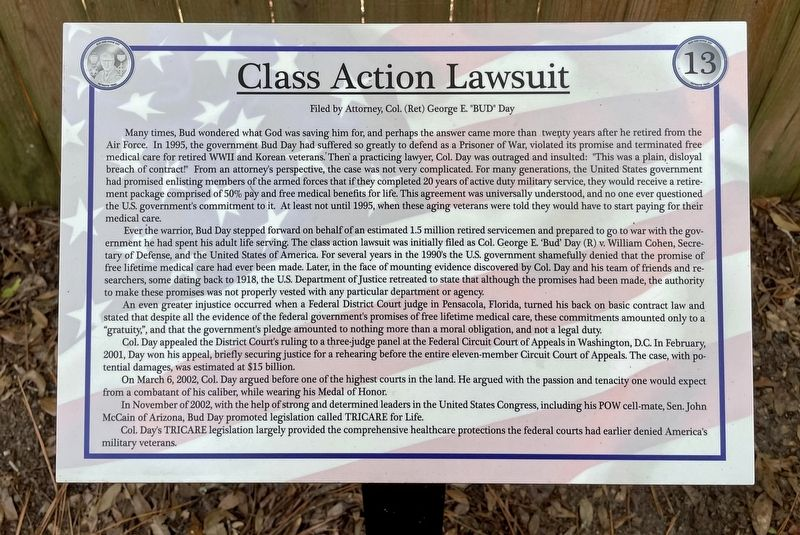 Class Action Lawsuit Marker image. Click for full size.