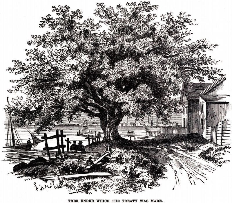 Tree under which the Treaty was Made. image. Click for full size.