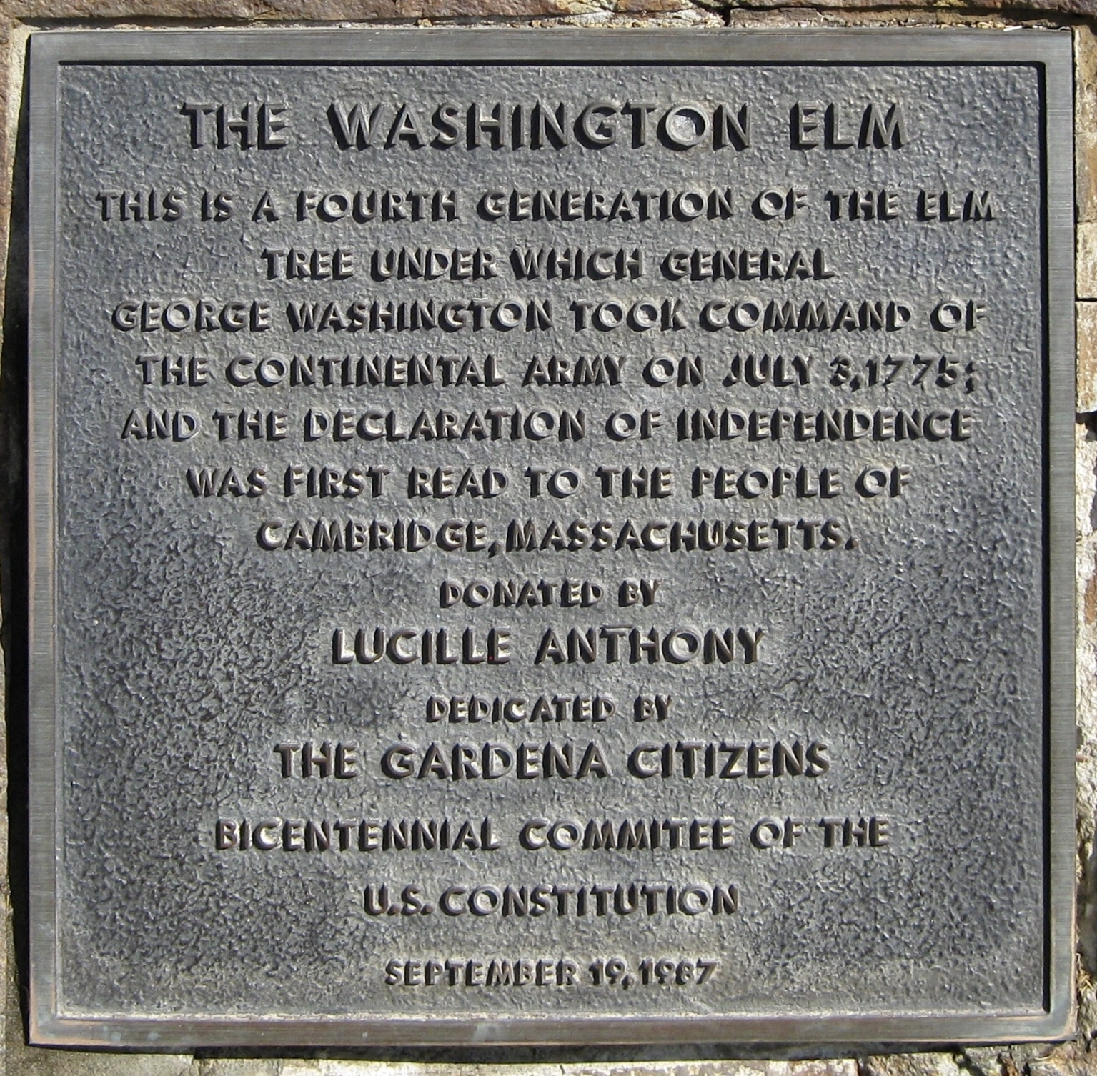Washington Elm Marker