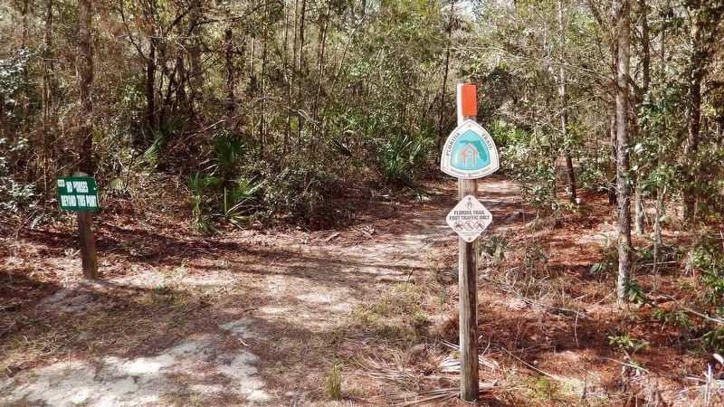 Florida Trail Sign image. Click for full size.