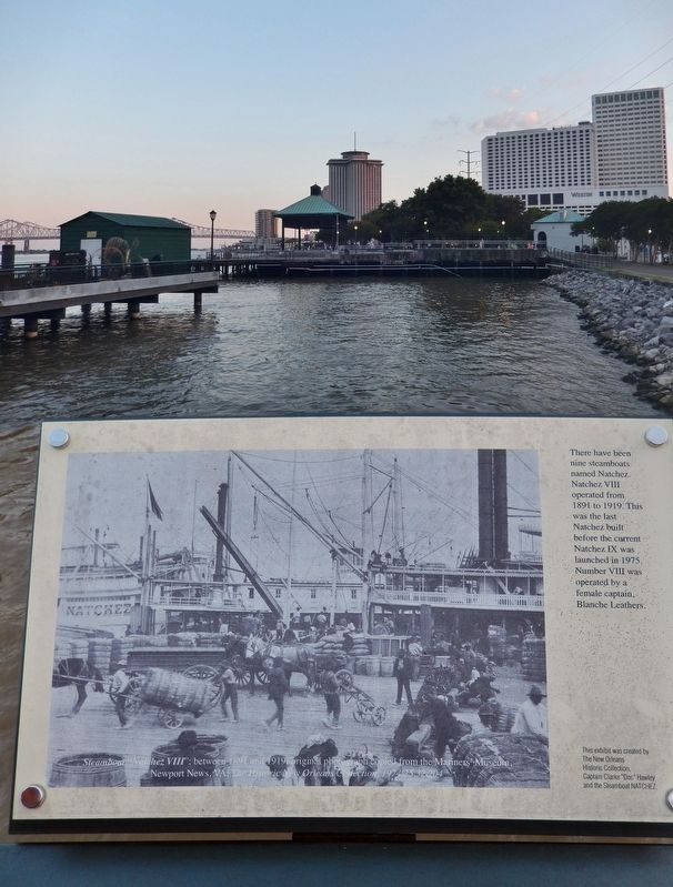 Natchez Steamboats Marker image. Click for full size.