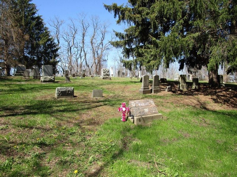 Freewill Cemetery image. Click for full size.